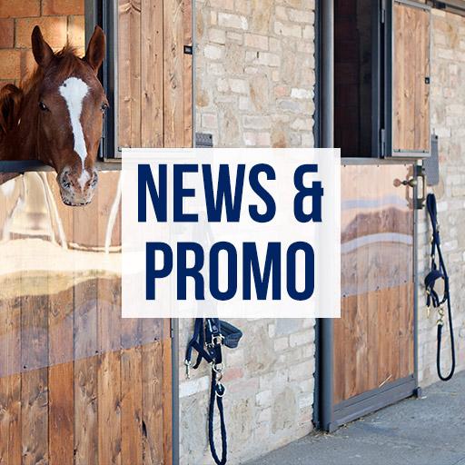 box-news-promo-maneggio